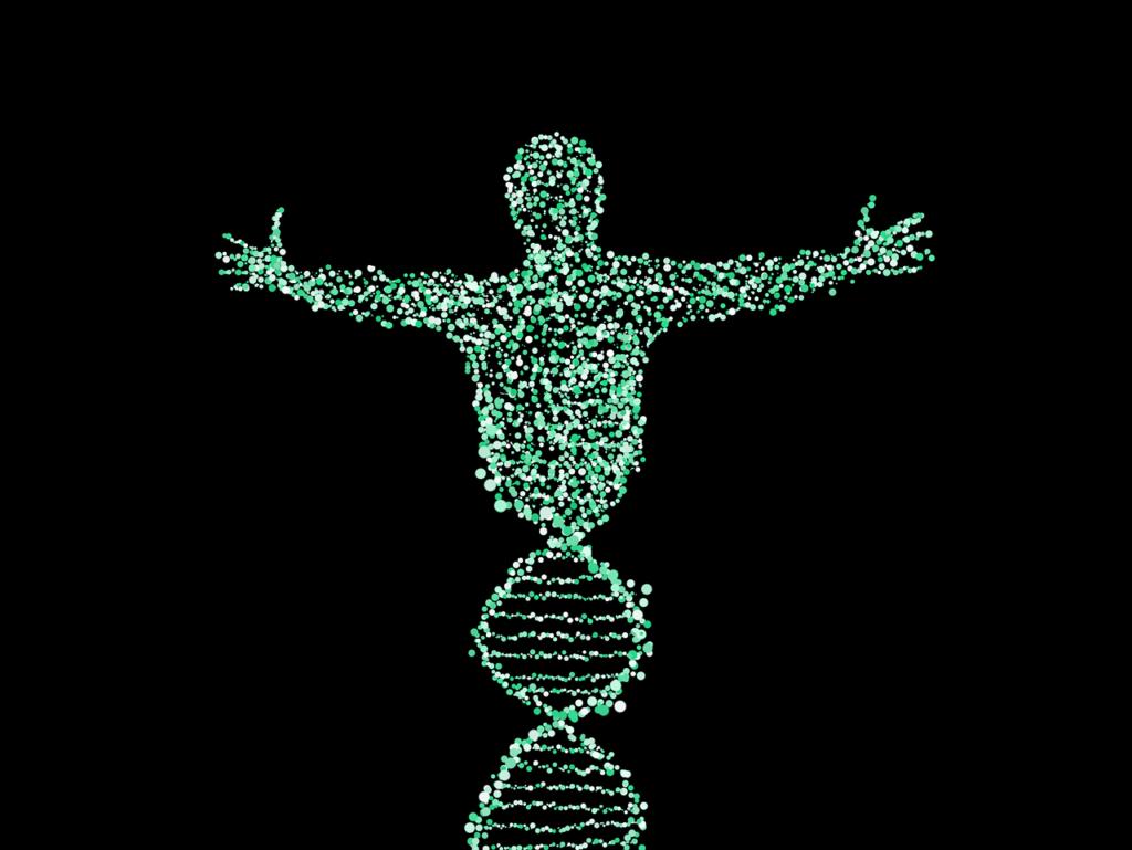 epigenetique